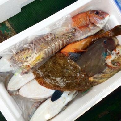 ✨2回目以降用  1.5キロ 瀬戸内鮮魚 詰め合わせ 6月1日〜10月31日まで✨ 1.5キロ〜 EBISU☆FISHERY