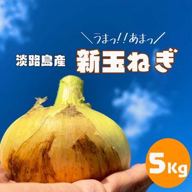 【大好評】甘いは当たり前 淡路島産 新玉ねぎ 5kg 母の日 5kg キーワード: 母の日 通販