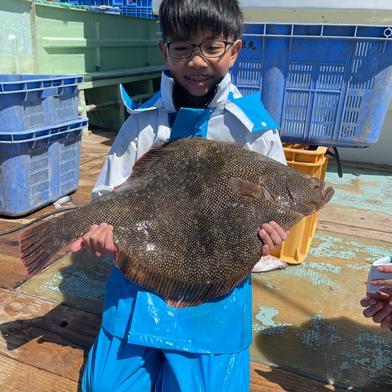 高級魚マツカワ3キロ以上 果物や野菜などのお取り寄せ宅配食材通販産地直送アウル