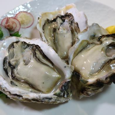永幸丸の超新鮮岩牡蠣!特大サイズ400g超!2kg 分 2kg 果物や野菜などのお取り寄せ宅配食材通販産地直送アウル