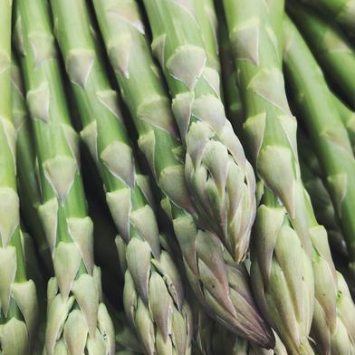 【おまけ付き!】おうち時間を楽しむ♪北海道産いろいろアスパラ 900g 2L、L、Mサイズアスパラ+アスパラ端っこ 果物や野菜などのお取り寄せ宅配食材通販産地直送アウル