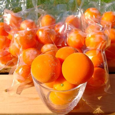 冷凍キンカン  1kg 1kg  2L   3L   4L  混合  200g(6個~10個)  5セット 果物や野菜などのお取り寄せ宅配食材通販産地直送アウル