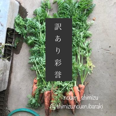 [予約]人参🥕訳あり彩誉✨5kg 5kg キーワード: 訳あり 通販