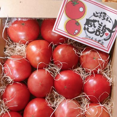 旨味がぎゅっと詰まった桃太郎トマト8キロ(訳あり) 4キロ箱✖️2 キーワード: 訳あり 通販