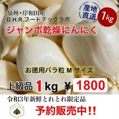 【予約販売】【6月中旬順次発送】 ジャンボにんにく 1kg(Mサイズ) 国産 採れたて随時乾燥して発送 1kg D.H.R.フードテックラボ