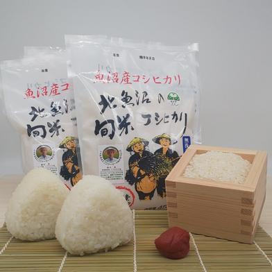 魚沼産旬米コシヒカリ 新鮮パック450g 450g×5 果物や野菜などのお取り寄せ宅配食材通販産地直送アウル