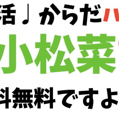 【お試し】【朝採れ】小松菜500g 500g キーワード: お試し 通販