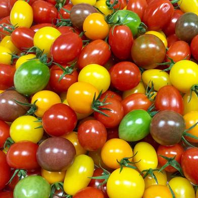 『母の日ギフト』ぷちぷよ入り彩りミニトマト1.1kg! 1.1kg キーワード: お試し 通販