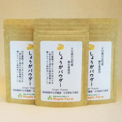 【送料無料】ピリッと辛い☆しょうがパウダー20g×3袋(栽培期間中農薬・化学肥料不使用の黄生姜を使用) 20g×3袋 メープルマート