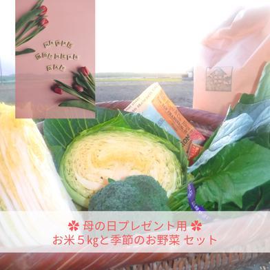 母の日プレゼント用 お米5㎏と季節のお野菜 お米(精米)5㎏と季節のお野菜4~5品目 キーワード: 母の日 通販