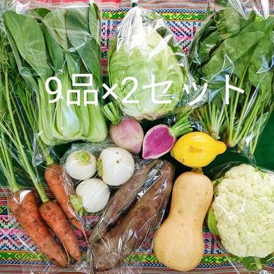 野菜セット9品×2セット★お友達と共同購入に♪ 野菜9品×2セット Pachamama