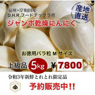 【予約販売】【6月中旬順次発送】 ジャンボにんにく 5kg(Mサイズ) 5kg D.H.R.フードテックラボ