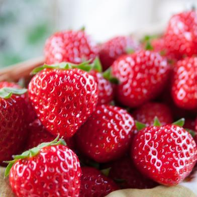 ★安心保証付き★ご家庭用サイズ混合 約7パック分の山盛りいちご 2kg 果物(いちご) 通販