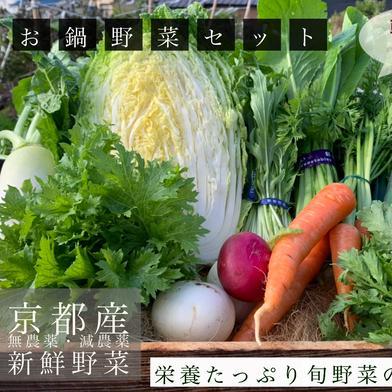 旬の野菜詰め合わせ6品 キーワード: キャベツ 通販