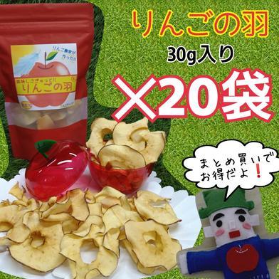 りんごの羽*20袋(無添加りんごチップス) 30g入*20袋 果物 通販