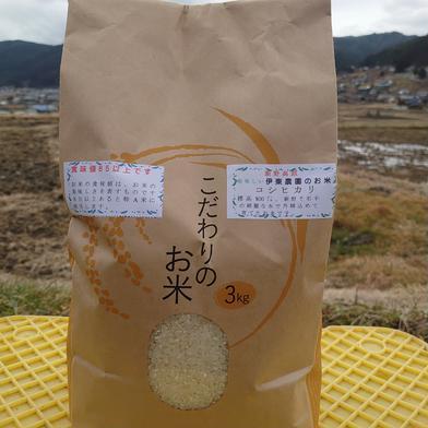 伊東農園のコシヒカリ 3kg 長野県 通販
