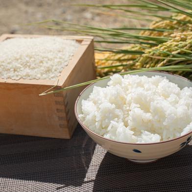令和2年度産合鴨農法はぜ掛け米5kg 5kg 長野県 通販