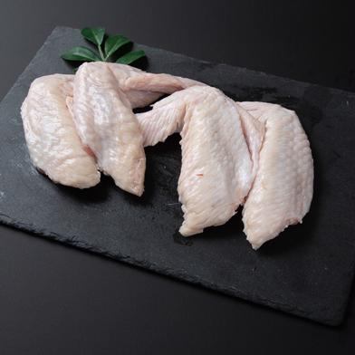 【冷凍】鹿野地鶏手羽先 1kgパック 手羽先1kg 鳥取県 通販