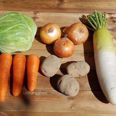 さくま農園「保存しやすいお野菜セット」 2~4㎏ キーワード: キャベツ 通販