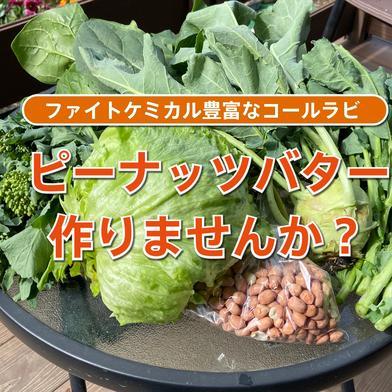 限定7セット!殻なし落花生(未焙煎)と季節の野菜セット ピーナッツ約250g、野菜はそれぞれ約150g〜200g、コールラビは1個 茨城県 通販
