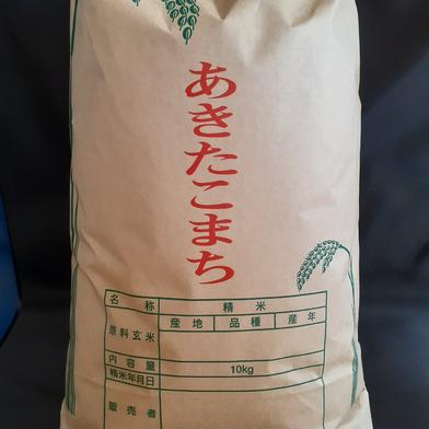 食べて納得!冷めても美味しいあきたこまち 令和2年産 10kg 10kg 秋田県 通販