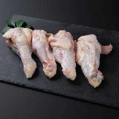 【冷凍】鹿野地鶏手羽元 1kgパック 手羽元1kg 鳥取県 通販