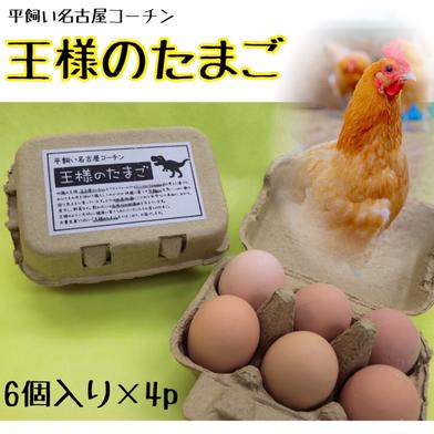 平飼い名古屋コーチン【王様のたまご】6個入り紙パック×4p 24個(1個当たり58~61g) 卵 通販
