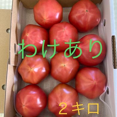 わけありトマト(2キロ箱)ご家庭用に! 山口秋穂トマト (2kg箱満杯) 1箱 野菜(トマト) 通販