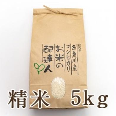 新潟県糸魚川産コシヒカリ 白米 5kg 5kg 新潟県 通販
