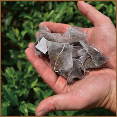 【送料無料】洋菓子に合う 焙じ茶ティーバッグ 1パック(2g×20包) お茶(ほうじ茶) 通販