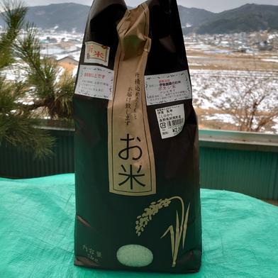 ボカシ米コシヒカリ 5㌔ 長野県 通販