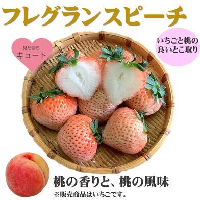 いちご フレグランスピーチ  350g 2パック 700g 果物(いちご) 通販
