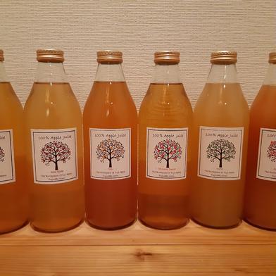 りんごジュース詰め合わせ 1000ml×6本 品種選べます 飲料(ジュース) 通販