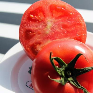 (再販開始❗️訳あり)旨味がぎゅっと詰まった桃太郎トマト 2キロ 野菜(トマト) 通販