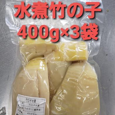 朝掘り竹の子の水煮400g×3袋 400g×3袋 加工品 通販