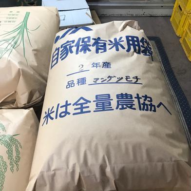 山田農園の新米満月もち 10キロ 米(もち米) 通販