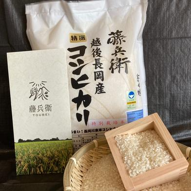お試し!特別栽培米 藤兵衛コシヒカリ 2kg お試し2kg 新潟県 通販