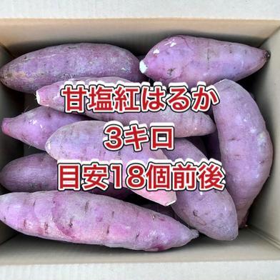 【鹿児島産】甘塩サツマイモ箱込み3キロ^_^ 箱込み3キロ前後(18キロ前後) 野菜(さつまいも) 通販