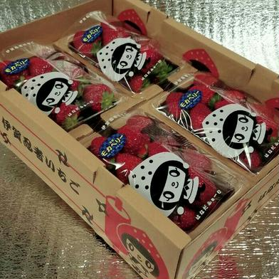 【特価価格】いろいろなサイズ『モカベリー』 苺 イチゴ ※簡易な梱包のため傷む可能性あり 一箱 苺のみ約900g以上【約230g×4パック】 果物や野菜などの宅配食材通販産地直送アウル