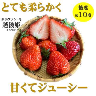 越後姫とフレグランスピーチの詰め合わせ  350g 2パック 700g 果物(いちご) 通販