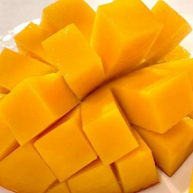 【数量限定】絶品!完熟★SAGAマンゴー(390g以上×1個) 1玉390g以上×1個 果物(マンゴー) 通販