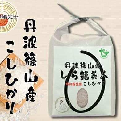 【お試し】新米R2年産お米ソムリエが作る丹波篠山こしひかり2kg 2kg 兵庫県 通販
