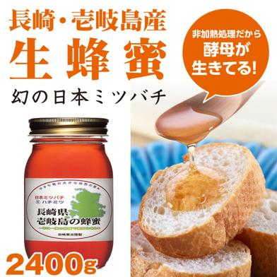 【壱岐島産】日本ミツバチのはちみつ 2400g 2400g 長崎県 通販