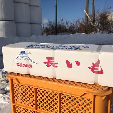 北海道真狩産 いんなみ農園の土付き長芋 10kg  10kg 果物や野菜などの宅配食材通販産地直送アウル