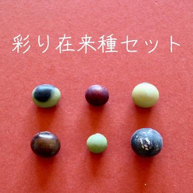 丹波篠山めぶき農房 彩り在来種セット 6種類から3種類選んでください 各200g入り 3種類を1袋ずつ 野菜(豆類) 通販
