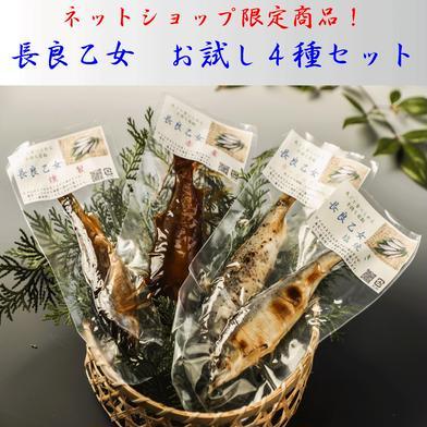 長良乙女お試し4種セット(送料無料) 4パック各1尾入り (有)美濃養魚場