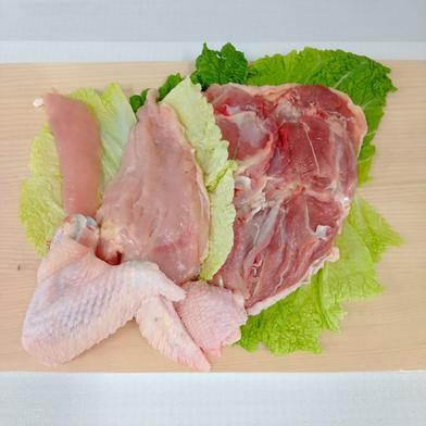 みやざき地頭鶏「半身」セット*冷凍発送のみ* 1.0kg前後 宮崎県 通販