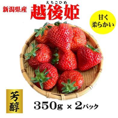いちご 越後姫 350g×2パック 700g 果物や野菜などの宅配食材通販産地直送アウル
