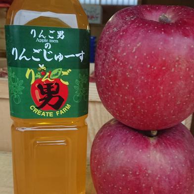 青森県産りんごじゅーす【王林】味 900ml 6本入り 900ml 6本入り 青森県 通販