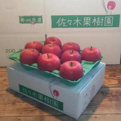【お試し小玉】サンふじ3kg【スマートフレッシュ】 約3kg(10~12玉) 果物や野菜などの宅配食材通販産地直送アウル
